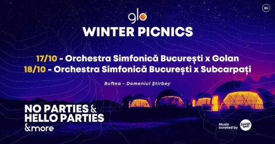 winter picnics